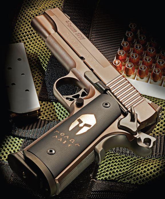 Molon Labe Gun Magazine Swat Vault