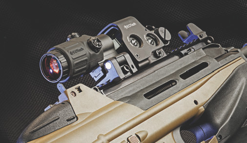 FS2000 comes usable with iron sights, but they sit so low that mounting an optic excludes their use.