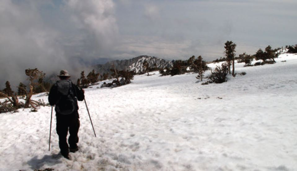 Trekking through bad weather without a compass after snow has covered the trail is difficult. Having an idea of what direction you need to travel in is the first step. Using the methods described in this article will help you find your way back.