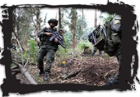 Jungla forces move through the bush, training for future ops that may require capturing an HVT in the jungle or taking down an HCL lab.