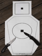 Warren Tactical Training Target provides perfect example of difference between an aiming point and an impact zone. At five yards, the one-inch square is an ideal aiming point for service-type sights, while the ring depicts vital hits.