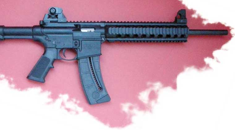 M&P15-22 with iron sights that come on the carbine. Note also A3 flattop and quad rail.